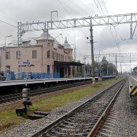 Железнодорожная станция Парголово., Парголово