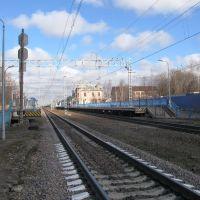 Станция Парголово, Парголово