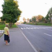 Озерковая, Петродворец