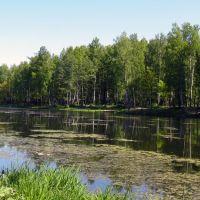 English landscape, Петродворец