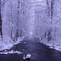 river, Петродворец