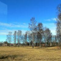 Весна, Петродворец