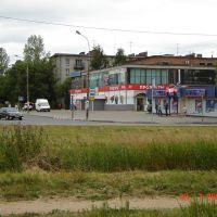 Старый Петергоф, Петродворец