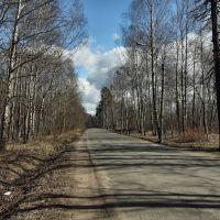 Заячий проспект. Апрель 2013, Петродворец