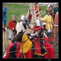 Priozersk. Knightly tournament., Приозерск