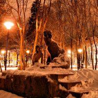 Приозерск. Памятник Маугли (ночью, да ещё и зимой.. брр:)), Приозерск