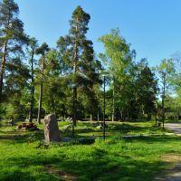 Зона отдыха у крепости Корела, Приозерск