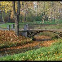 В парке осенью, Пушкин