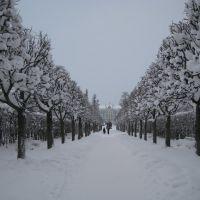 Пу́шкин - Екатерининский Парк - Pushkin - Catherine Park, Пушкин
