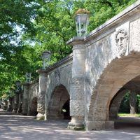 皇村花园 Queen Village Garden, Пушкин