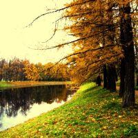 осень в Царском Селе, Пушкин