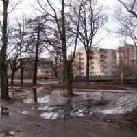 ранняя весна, Сестрорецк