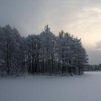 На оэере, Сестрорецк