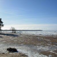 Russian beach :-), Сестрорецк