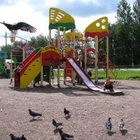 Playground, Сланцы