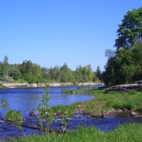Река Плюсса, устье реки Кушелка, Сланцы