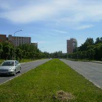 Одна из улиц (The one of the streets), Сосновый Бор