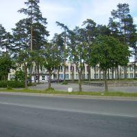 Городской дворец культуры (Culture-palace), Сосновый Бор