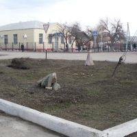 Аркадакский Сад камней, Аркадак