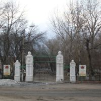 Городской парк, Аркадак