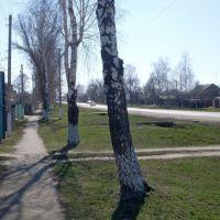 На ул. Володарского, Аркадак