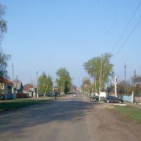Ул. Льва Толстого, Аркадак