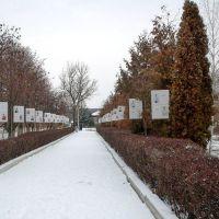 Аллея Детей в парке Куйбышева., Балашов