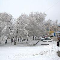 У девятины после снегопада, Балашов
