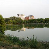 Купзаводской пруд, Екатериновка