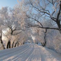 Морозный день, Екатериновка