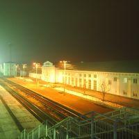 Ночной вокзал, Ершов