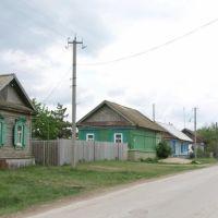 ул. Гунина, Ивантеевка