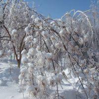 Поздняя зима, Красноармейск