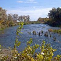 Река Медведица в черте посёлка., Лысые Горы
