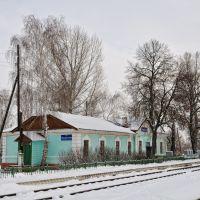 Вокзал, Лысые Горы