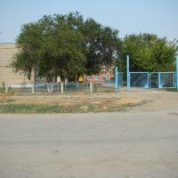 Школа №4, Новоузенск