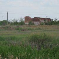 Остатки кирпичного завода, Озинки