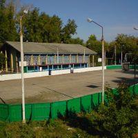 Каток в городском парке, Петровск