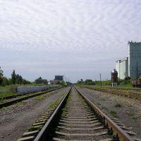 линия, Романовка