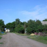 улица Мира, Романовка