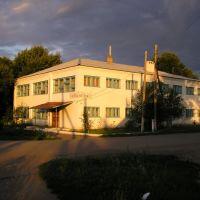 Библиотека, Романовка