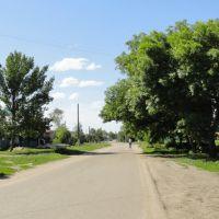 ул. Советская, Романовка