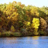 Краски осеннего леса / Colours of the autumn forest, Самойловка