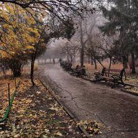 Autumn Fog, Саратов
