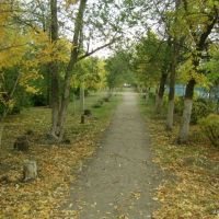Парк осенью, Степное