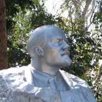 Хвалынск. Памятник Ленину., Хвалынск