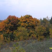 Хвалынская осень, Хвалынск