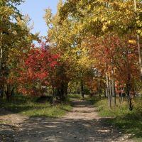 Осень, Алдан