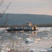 Russia, Lena River. Ferry near Kachikattsy, Бестях