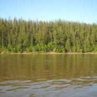 Река Яна, Власово